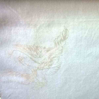 Тик пуходержащий 100% хлопок, дизайн белый лебедь